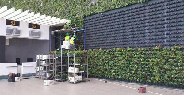 0-зелёная стена