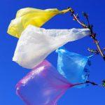Более 40 стран отказались от полиэтиленовых пакетов.