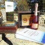 Шампанское «Золотая Балка» — лучшее игристое вино России