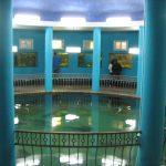 Топ-5 аквариумов Крыма, которые стоит посетить туристу