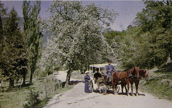 весна в крыму-1910-Petr-Vedenisov_27
