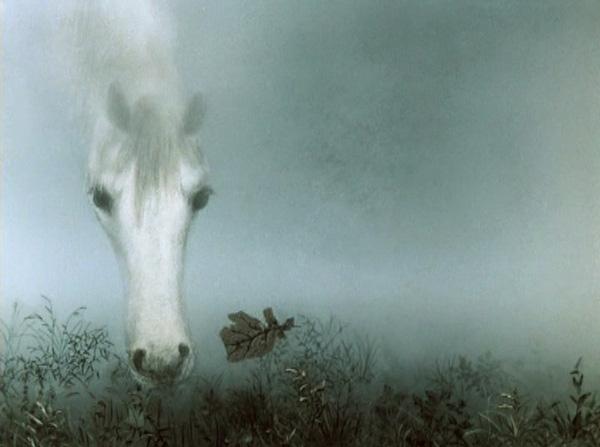 туман--
