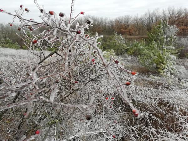 0-снеги-дождь