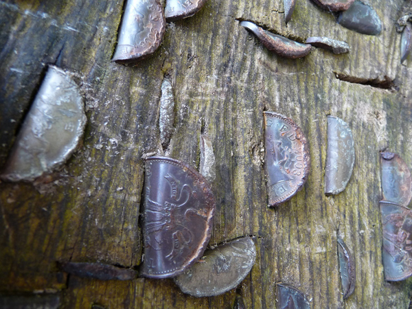 00-Bent coins in a tree stump