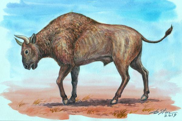 Вот такие быки водились в Тавриде