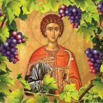 Болгарский праздник виноделия — Трифоновден