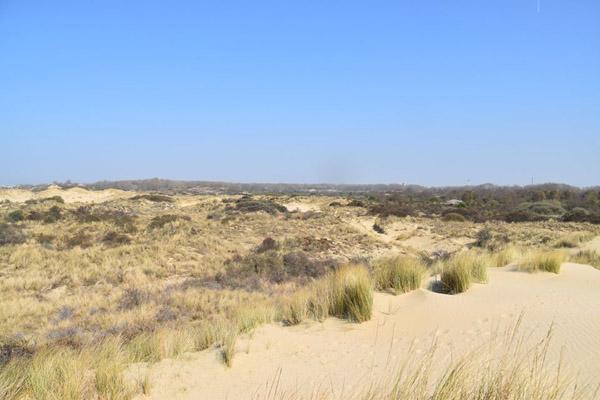 песок-трава