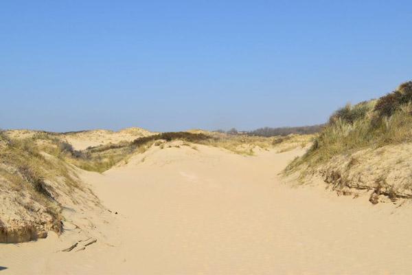песок-0