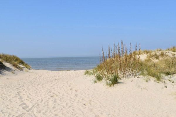песок-6