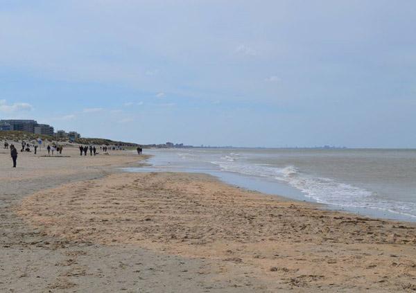 пляж-5