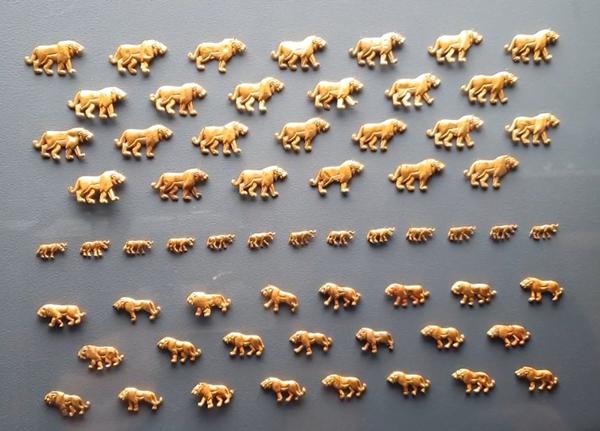 львы-барсы-гепарды