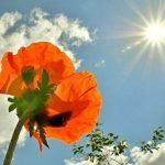 Ярило — бог весеннего солнца