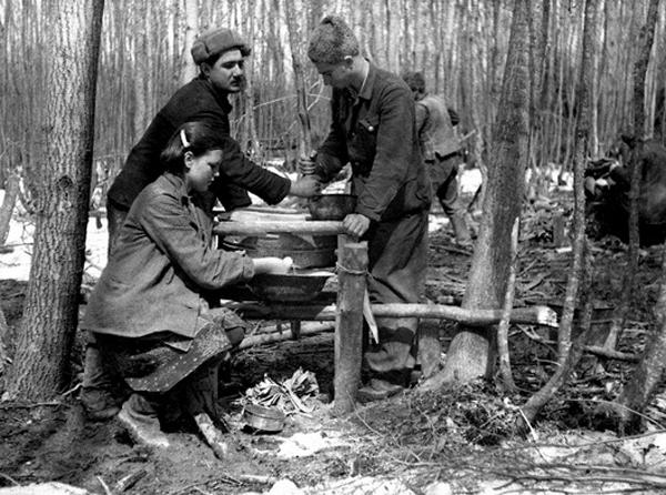 партизаны-1943