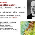 Первооткрыватель вирусов работал в Крыму