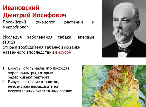 00- ивановский