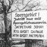Архивные документы о жизни севастопольцев в фашистской оккупации