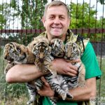 Сафари-парк «Тайган» пережил карантин и открывается