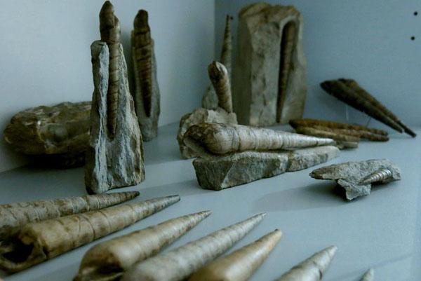 Крым 180 миллионов летм
