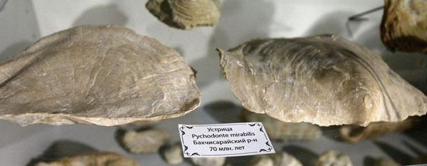 Крым 180 миллионов леть