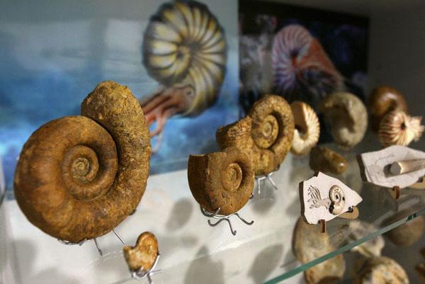 Крым 180 миллионов лет
