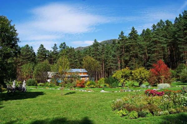 gorno-altajskij-botanicheskij-sad-