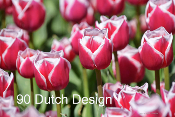 90-Dutch-Design