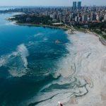 Экологическая катастрофа в Мраморном море