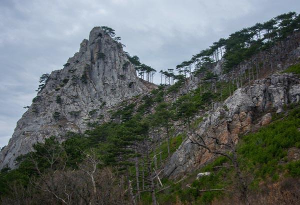 Соколиная скала Крым- Алупка